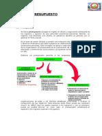 TEMA PRESUPUESTO 1.pdf
