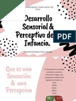 Desarrollo Sensorial & Perceptual
