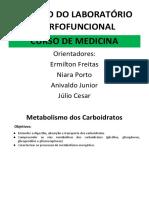 AES 05 01 - Metabolismo dos Carboidratos_Roteiro_Aluno.docx