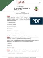Lei orgânica de Porto Belo-SC