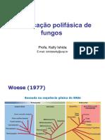 Identificação polifásica de fungos.pdf