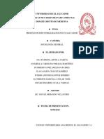 Industrializacion Investigacion (1)