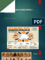 1 PERU en EL CONTEXTO INTERNACIONAL Desigualdades Horizontales -Etnicidad