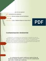 CONTAMINACION AMBIENTAL.pptx