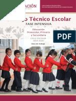 Guía CTE Fase Intesiva 2019-20