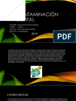 La Contaminación Ambiental Diapositivas