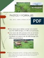 Alimentacion Para Epoca de Sequia - Pastos y Forrajes