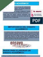 ENSAYO ACADEMICO [Autoguardado].pptx