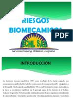 riesgo biomecanico ENVIA.docx