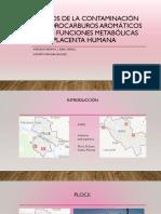 Impacto de Hidrocarburos Aromáticos en la placenta