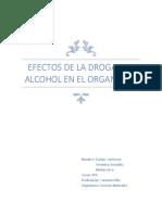 Efectos de La Droga y El Alcohol en El Organismo