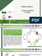 DB - Bolsos Ecológicos del Perú.pptx