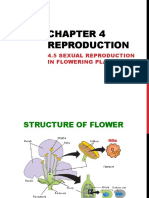 4.6 Reproduction in Plants