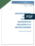 sub microecono.docx