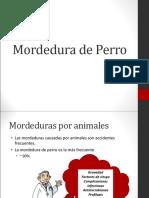 mordeduradeperro-121129211150-phpapp02.ppt