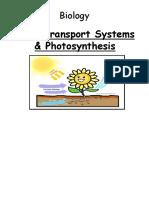 n4n5 Photosynthesis Powerpoint