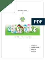 Final Report Dettol