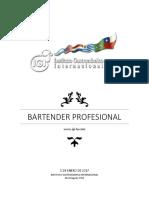 Bartender Profesional