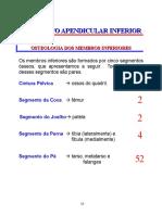 Esqueleto apendicular inferior - osteologia.doc