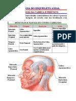 Esqueleto axial - miologia.doc