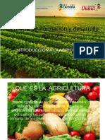 Introduccion a La Agricultura
