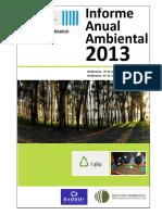 Informe Ambiental Anual 2013