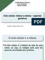 Ciclo Celular - Mitose e Meiose - Aspectos Genétic