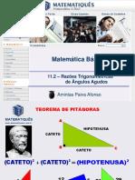 11.2 Razões trigonométricas de angulos agudos.ppt
