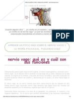 Estimula El Nervio Vago y Reduce El Estrés - Ayurvedavidayarmonia
