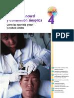 Biopsicologia 4