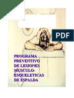 Programa preventivo de lesiones músculo esqueléticas de espalda