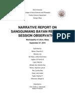 Local Government Narrative Report