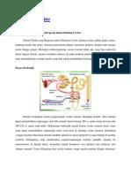 KDM2 teori.docx
