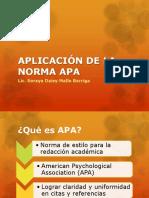Aplicación de La Norma Apa