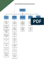Protocolos Mapa Conceptual