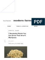 7 Smokable Plants You Can Grow That Aren't Marijuana - Modern Farmer