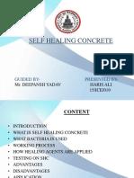 Self Healing Ppt (4)