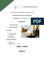 330573988-Informe-6-Actividad-Hipoglicemiante.docx