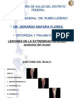anatomiadelmuslo-141003113440-phpapp01