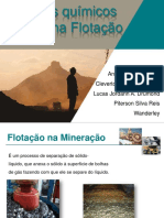trabalhoflotao-131021081442-phpapp02