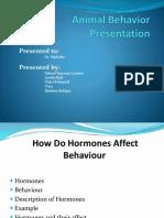 Animal Behavior Presentation
