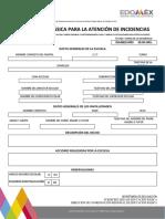 Formato de Informacion Basica Para La Atención de Incidencias 1