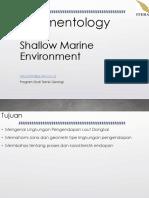 13-ShallowMarine.pdf