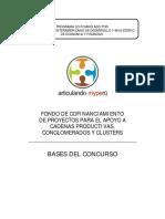 Bases Fondo de Proyectos Presentacion Perfiles[1]