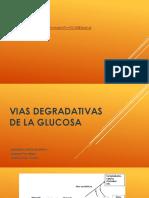Tema 1. Glicolisis y Ciclo de Krebs.pptx