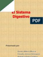 El Sistema Digestivo Final