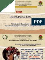 Cultura y Pueblos Indígenas