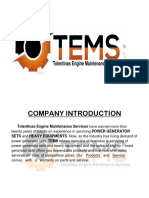 tems updated company profile.pdf
