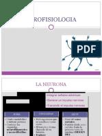 neurofisio.pptx