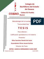 tesina modificado